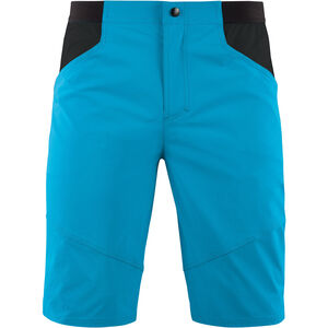 Cube Edge Lightweight Shorts Herren blue