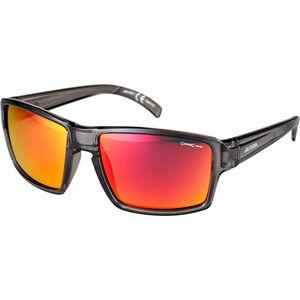 Alpina Melow Glasses grey transparent grey transparent