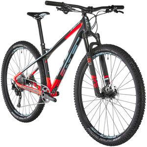 "GT Bicycles Zaskar Carbon Expert 29"" raw raw"