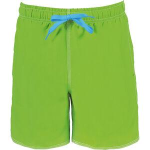 arena Fundamentals Solid Boxer Men leaf-turquoise