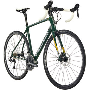 FOCUS Paralane 105 racing green bei fahrrad.de Online