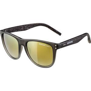 Alpina Ranom Glasses grey gradient matt grey gradient matt