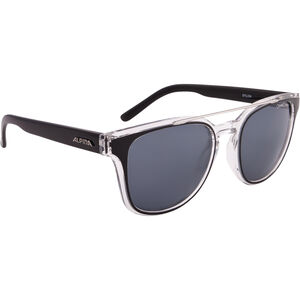 Alpina Sylon Glasses black-transparent black-transparent