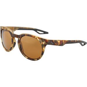 100% Campo Glasses soft tact havana   bronze peakpolar soft tact havana   bronze peakpolar