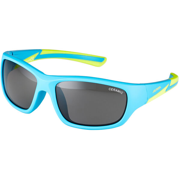 Alpina Flexxy Youth Glasses
