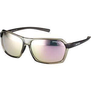 Alpina Finety Glasses transparent-grey transparent-grey