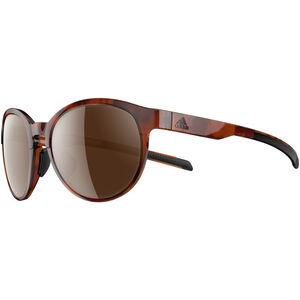 adidas Beyonder Glasses Damen brown havanna/brown brown havanna/brown