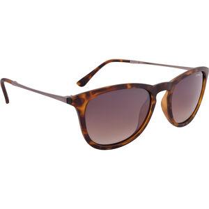Alpina Zaryn Glasses havana matt havana matt