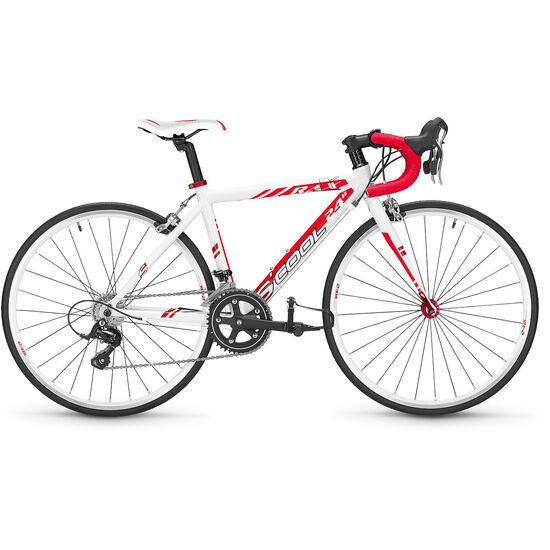 s'cool raX 24 18-S bei fahrrad.de Online