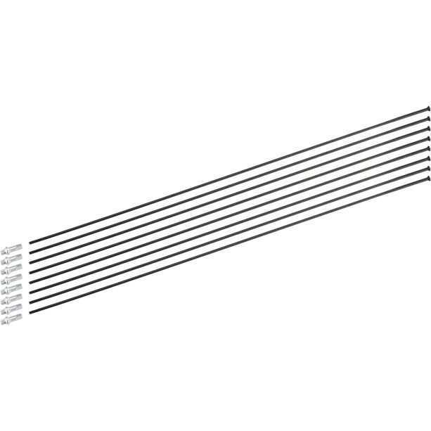 DT Swiss Speichenkit für H 1900 Spline 29