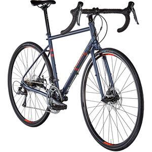 Marin Nicasio blue bei fahrrad.de Online