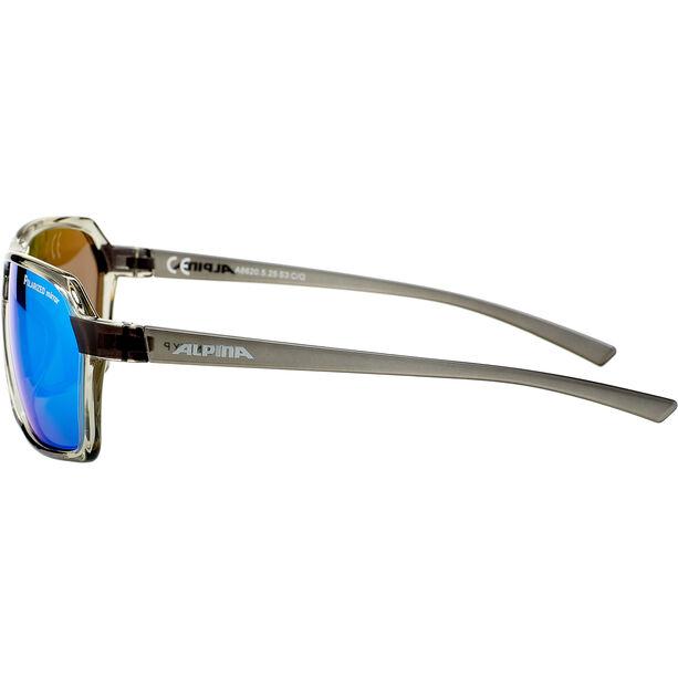 Alpina Finety P Glasses transparent-grey