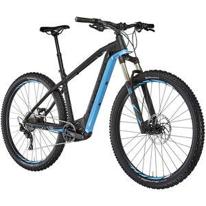 2. Wahl FOCUS Bld 2 black matt/blue bei fahrrad.de Online