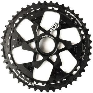 e*thirteen TRS Plus Ritzel 12-fach black black