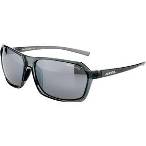 Alpina Finety Glasses smoke transparent smoke transparent