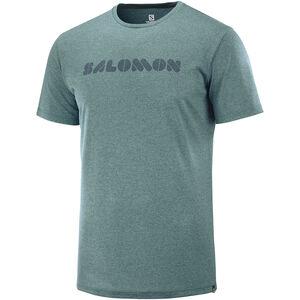 Salomon Agile Graphic t-Shirt Herren green gab green gab