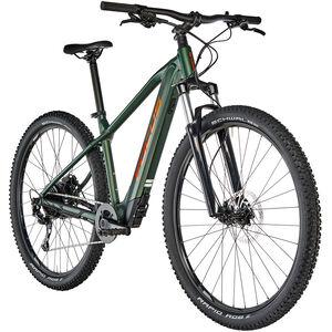 FOCUS Whistler² 6.9 mossgreen bei fahrrad.de Online