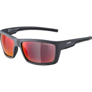 Alpina Slay Glasses anthracite matt