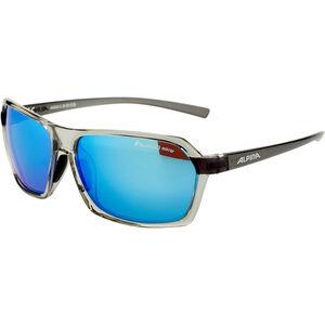Alpina Finety P Glasses transparent-grey transparent-grey