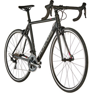 FOCUS Izalco Race 6.9 freestyle matt freestyle matt