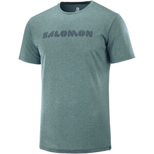 Salomon Agile Graphic t-Shirt Herren green gab green gab
