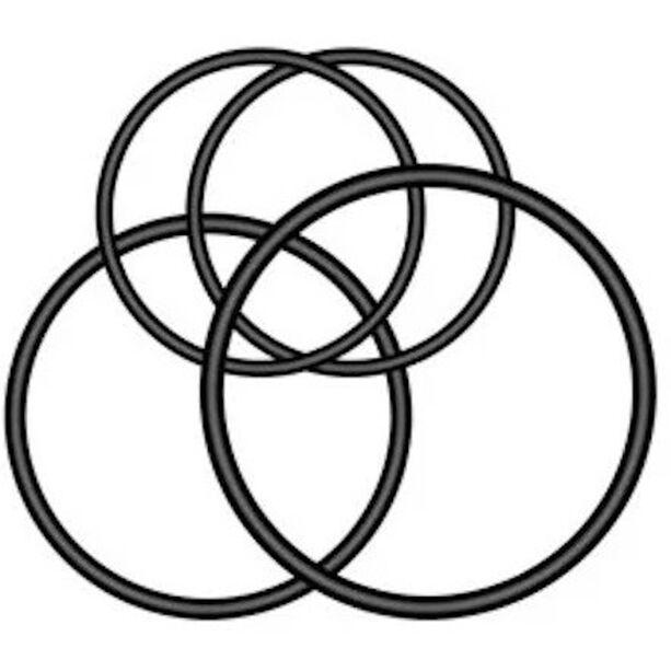 Garmin Varia Multi-Location Befestigungs O-Ringe für Rückleuchten black
