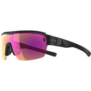 adidas Zonyk Aero Pro Glasses L black matt lst vario purple black matt lst vario purple