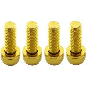 Reverse Scheibenbremsen-Schrauben Set gold gold