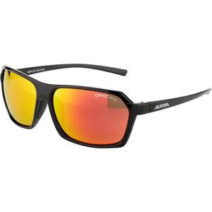 Alpina Finety Glasses black-black matt black-black matt