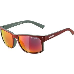 Alpina Kosmic Glasses red matt-green red matt-green
