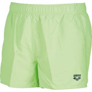 arena Fundamentals Boxers Herren shiny green-navy shiny green-navy