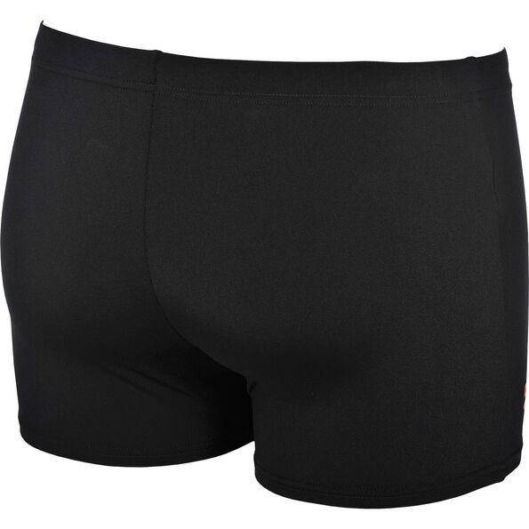 arena Spike Swim Shorts