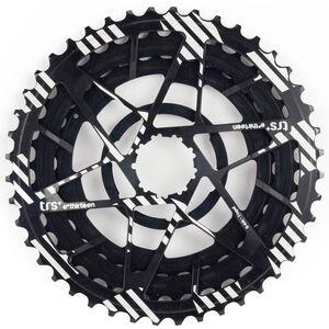 e*thirteen Aluminiumritzel 32-38-44 für TRS+ Kassette 11-Fach schwarz