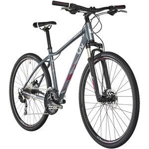 Liv Rove 1 Disc DD Greyish Blue bei fahrrad.de Online
