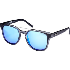 Alpina Sylon Glasses black matt-black transp. black matt-black transp.