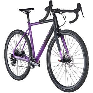 Marin Cortina AX2 purple bei fahrrad.de Online