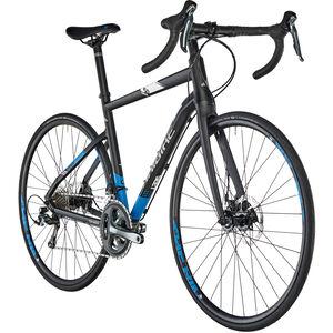 HAIBIKE Seet Race 5.0 schwarz/blau/weiß bei fahrrad.de Online