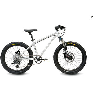 "Early Rider Hellion Trail HT 20"" Fahrrad brushed aluminum"