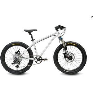 "Early Rider Hellion Trail HT 20"" Kinderrad brushed aluminum bei fahrrad.de Online"