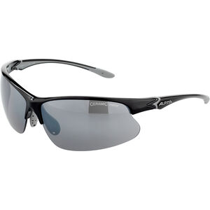 Alpina Dribs 3.0 Glasses black-grey black-grey