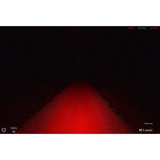 Lupine Rotlicht Rücklicht StVZO bei fahrrad.de Online