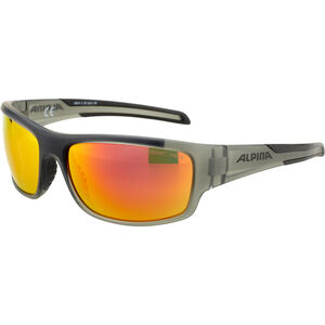 Alpina Testido Glasses anthracite matt-black anthracite matt-black