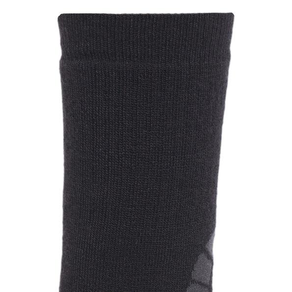 axant Merino Expedition Socks grey
