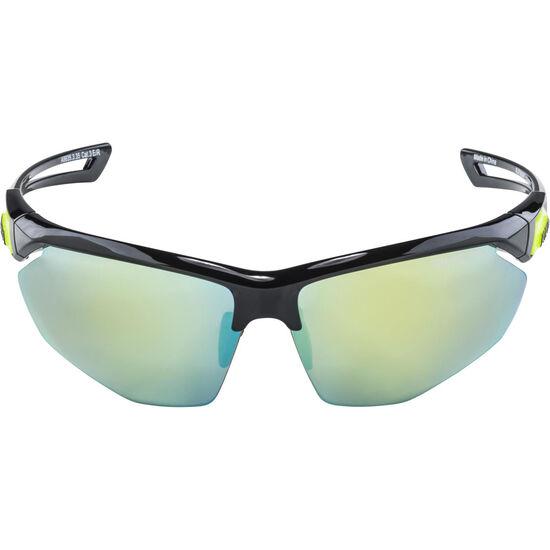 Alpina Nylos HR Glasses bei fahrrad.de Online
