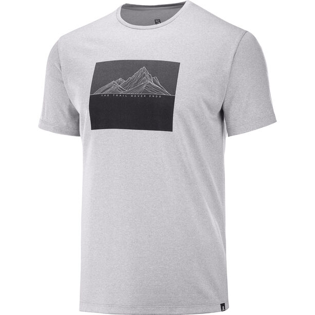 Salomon Agile Graphic T-Shirt Herren alloy/heather