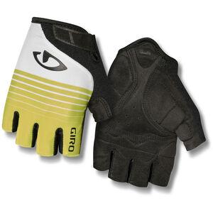 Giro Jag Gloves Men citron green bei fahrrad.de Online