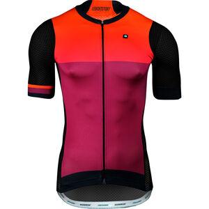e23a7091c4 Biehler Pro Team Radtrikot Herren online kaufen | fahrrad.de