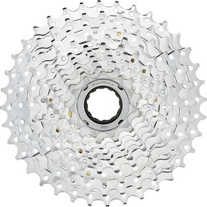 SunRace MFEZ1 Schraubkranz 10-fach chrom bei fahrrad.de Online
