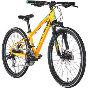 "Serious Rockaway 24"" Disc yellow/black"