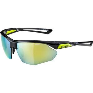 Alpina Nylos HR Glasses black-neonyellow